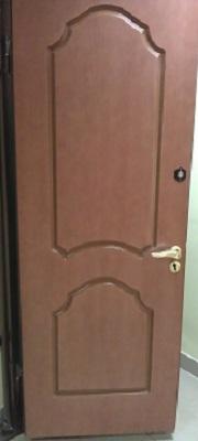 железные двери зеленый проспект
