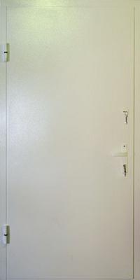 двери уличные металлические с порошковым напылением нестандартные